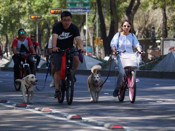Paseo dominical muévete en bici