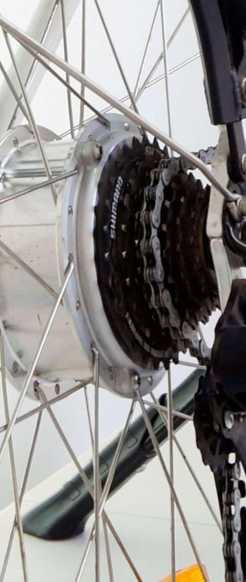 _DSC8085-baja-motor